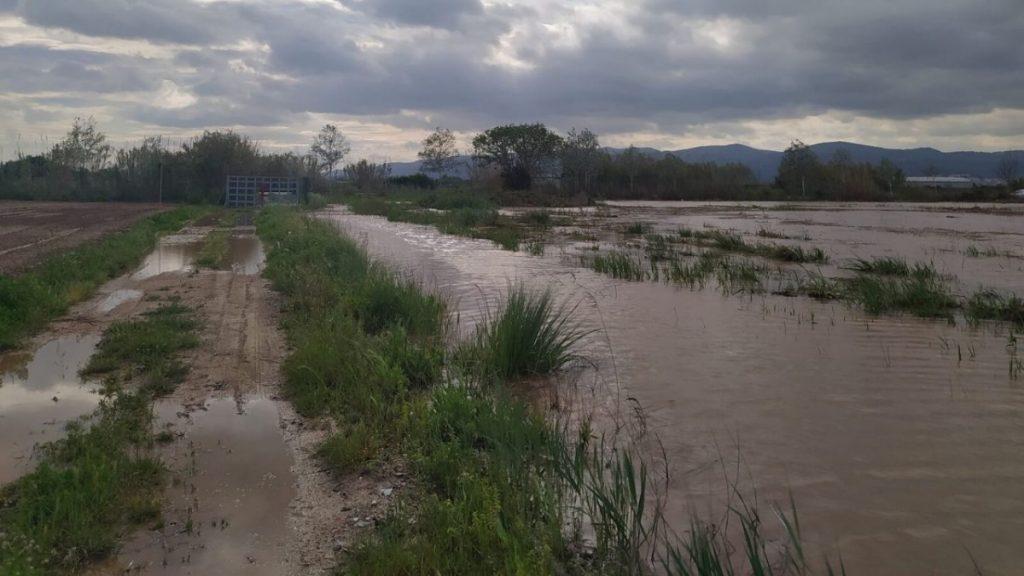 Campo agrícola de Viladecans inundado