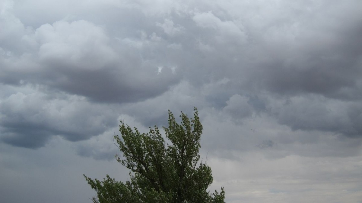 Previsión de fuertes vientos a partir de mañana por la mañana hasta la madrugada del domingo, viladecans noticias, noticias viladecans